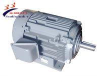Động cơ điện Hitachi (1/8hp-40HP)
