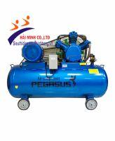 Máy nén khí dây đai PEGASUS TM-W-1.0/8-500L