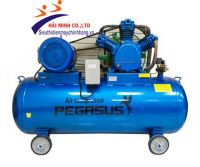 Máy nén khí dây đai PEGASUS TM-W-0.67/8-500L