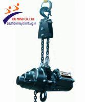 Palang xích điện treo ngược Strong DH-1000
