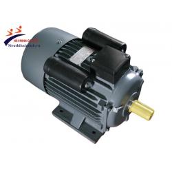 Động cơ điện Kaijieli (0,5HP-5HP)