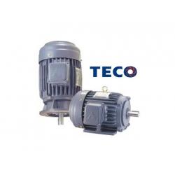 Motor Teco Việt Nam