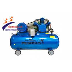 Máy nén khí dây đai PEGASUS TM- W- 2.0 / 12.5-500 L