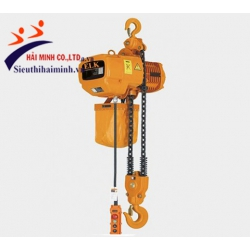 Palang xích điện cố định 1 tấn HKD0101S