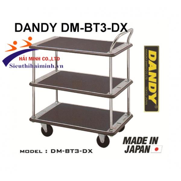 Xe đẩy hàng DANDY DM-BT3-DX