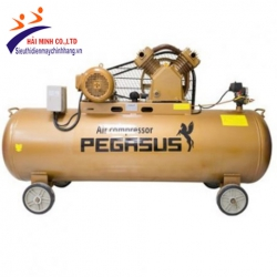 Máy nén khí dây đai Pegasus TM-W-0.36/8-120L (220V)