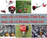 So sánh máy cắt cỏ Honda GX35 Nhật Bản và Thái Lan